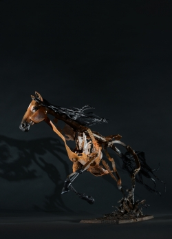 Cheval - ©Thierry Chollat